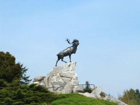 Beaumont_hamel_newfoundland_memorial