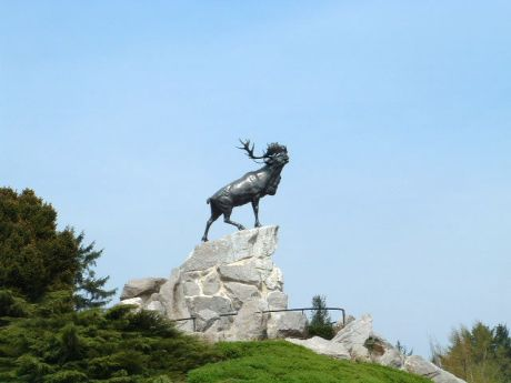 Beaumont_hamel_newfoundland_memorial